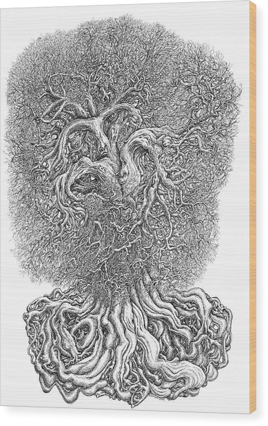Tree Wood Print by Joe MacGown