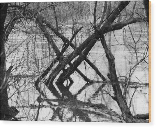 Tree Line Wood Print by Cynthia Ann Swan