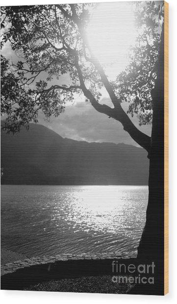 Tree On Lake Wood Print