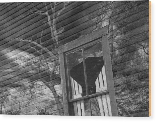 Tree On Window Wood Print
