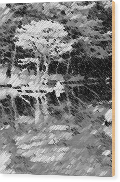 Tree Reflecting In Pond Wood Print by Curtis Schauer