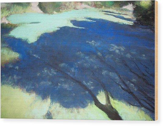 Tree Shadows Wood Print by Anita Stoll