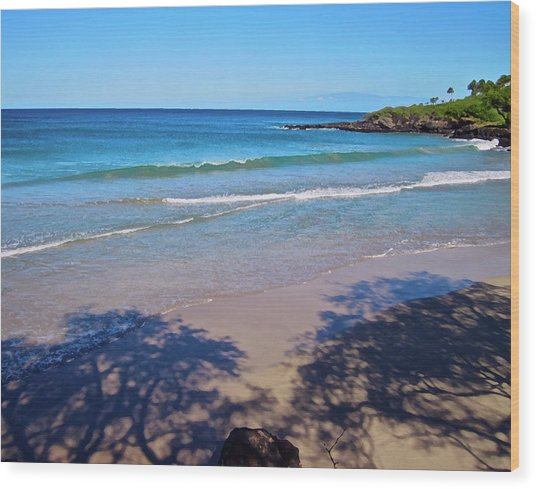 Tree Shadows At Hapuna Beach Wood Print