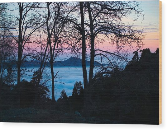 Tree Silhouettes On Troodos 2 Wood Print