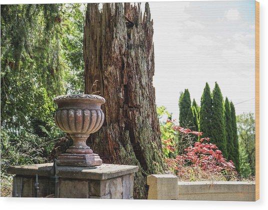 Tree Stump And Concrete Planter Wood Print