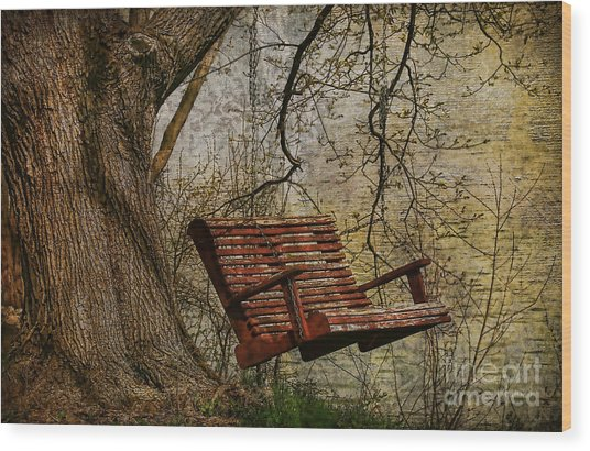 Tree Swing By The Lake Wood Print