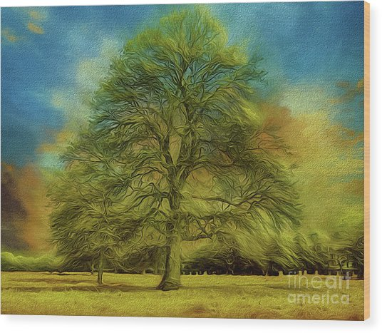 Tree Three Wood Print
