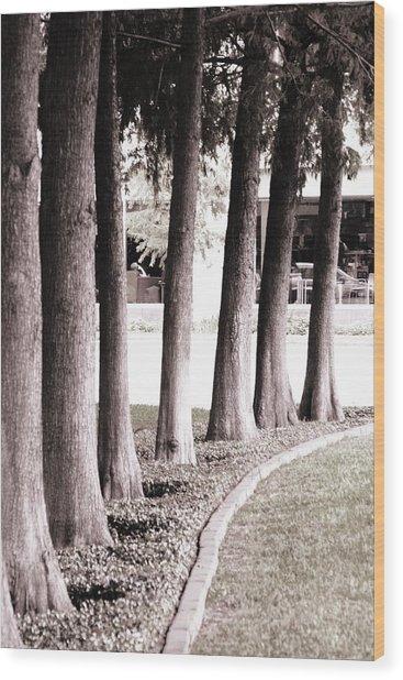 Trees 2 Wood Print by Gracey Tran
