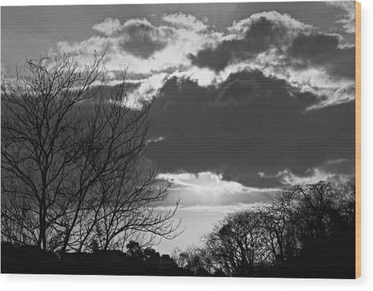Trees And Clouds-st Lucia Wood Print