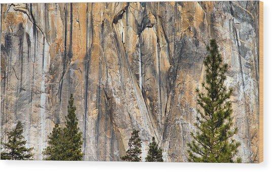Trees And Granite Wood Print