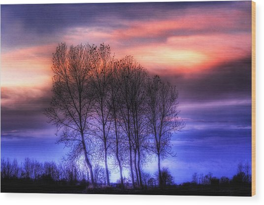 Trees And Twilight Wood Print
