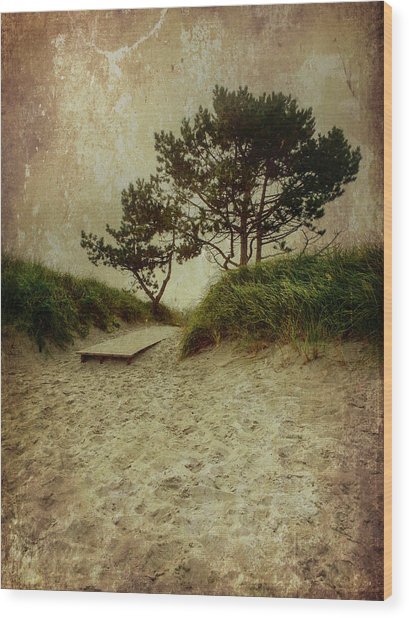 Trees By The Sea Wood Print
