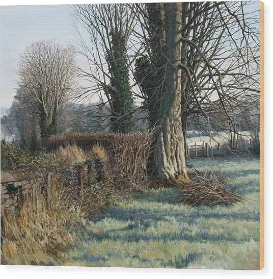Trees Early Morning In Winter Wood Print by Eugene Conway