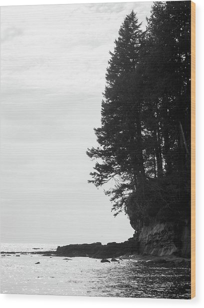 Trees Over The Ocean Wood Print