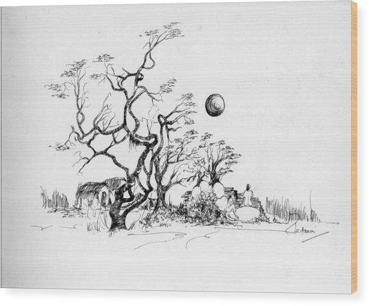 Trees Rocks And A Ball Wood Print by Padamvir Singh