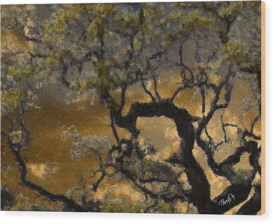 Treetop Sunset Wood Print