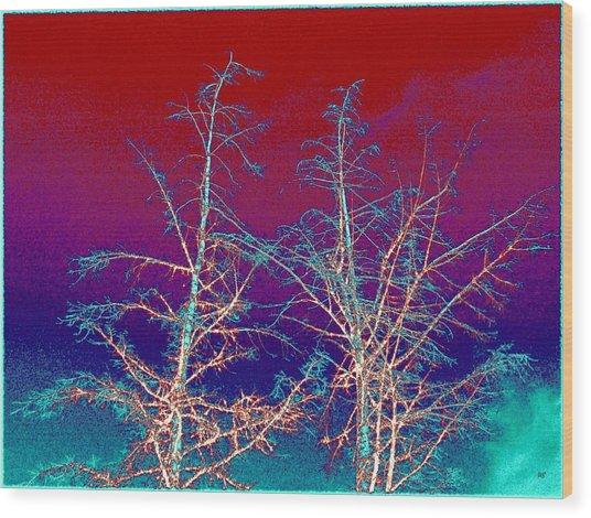 Treetops 4 Wood Print