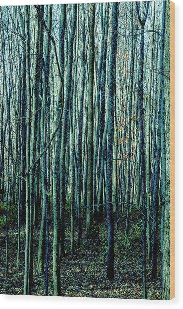 Treez Cyan Wood Print