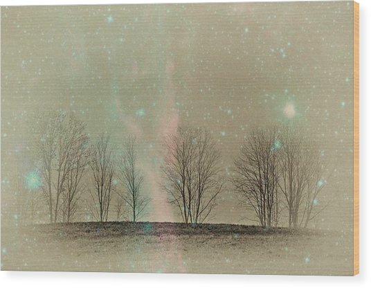 Tress In Starlight Wood Print