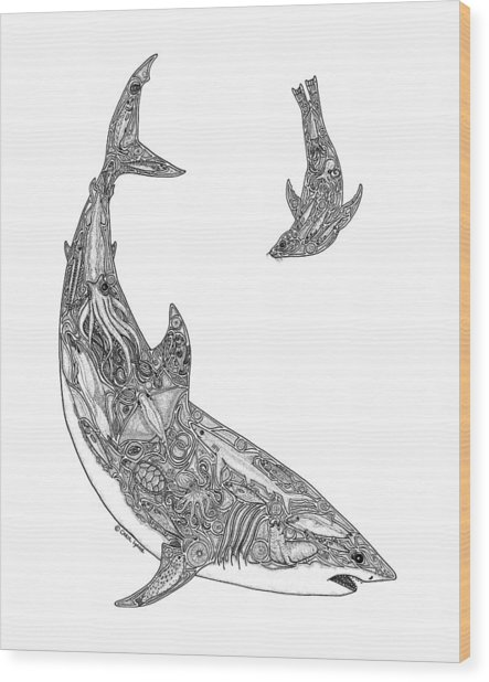 Tribal Great White And Sea Lion Wood Print