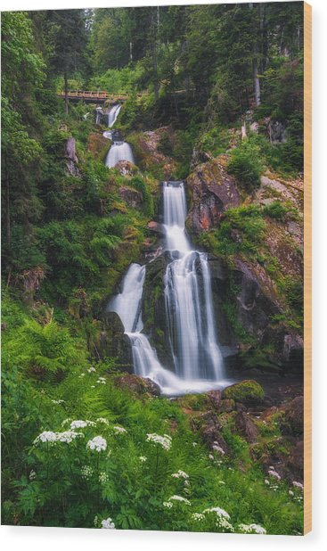 Triberg Waterfalls Wood Print