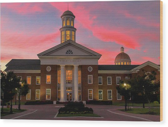 Trible Library Pastel Sunset Wood Print