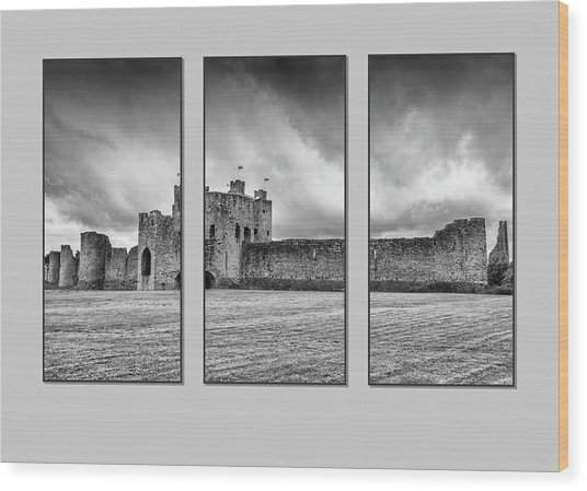 Trim Castle Triptych  Wood Print