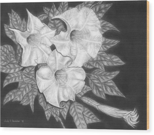 Trio Of Heavenly Blossoms Wood Print by Nicole I Hamilton
