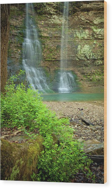 Tripple Falls In Springtime Wood Print