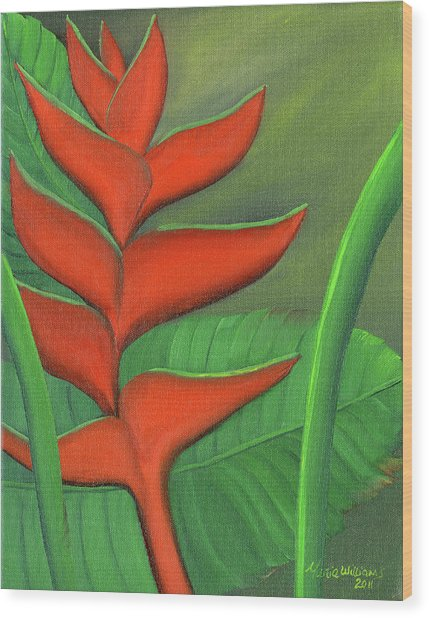 Tropical Beauty - Red And Green Heliconia Wood Print by Maria Williams
