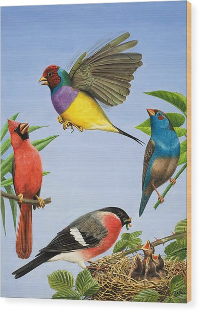 Tropical Birds Wood Print