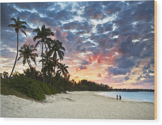 Tropical Caribbean White Sand Beach Paradise At Sunset Wood Print by Dave Allen