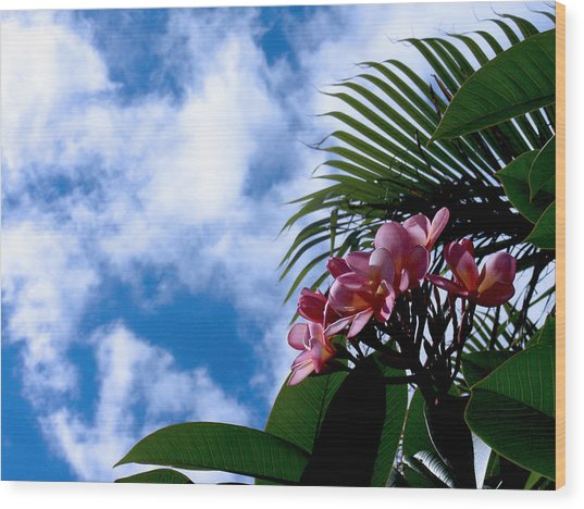 Tropical Days Wood Print by Edan Chapman