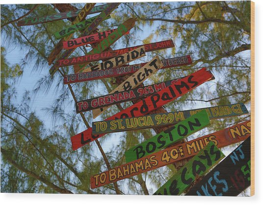 Tropical Directions Wood Print
