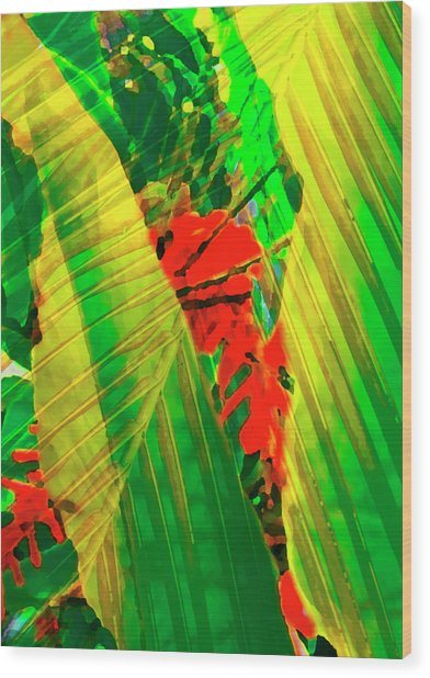 Tropical Fusion Wood Print