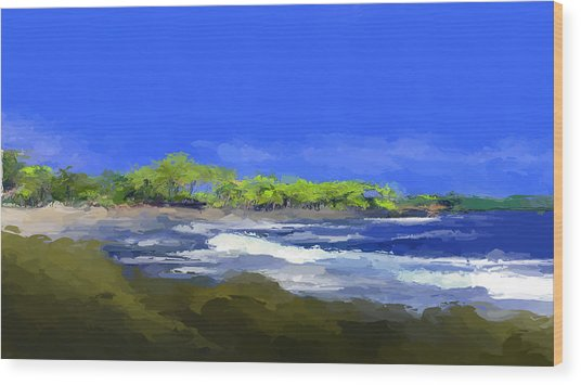 Tropical Island Coast Wood Print
