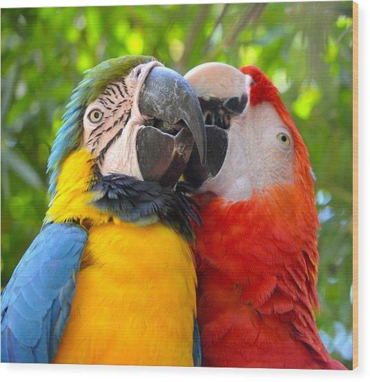 Tropical Kisses Wood Print