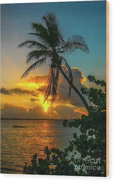 Tropical Lagoon Sunrise Wood Print