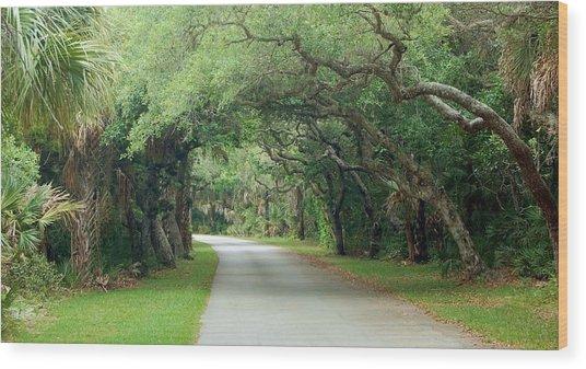 Tropical Magic Forest Wood Print