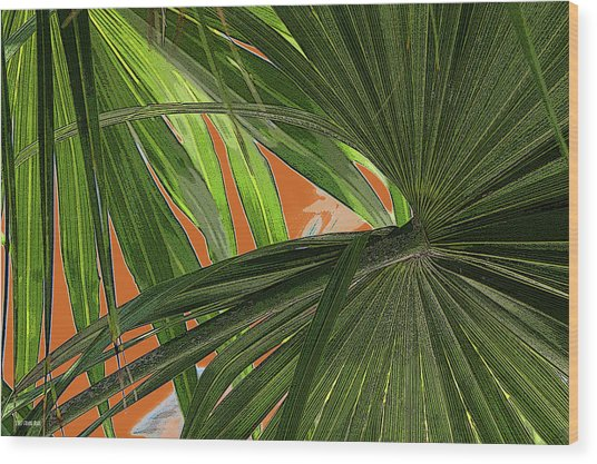 Tropical Palms 2 Wood Print by Frank Mari