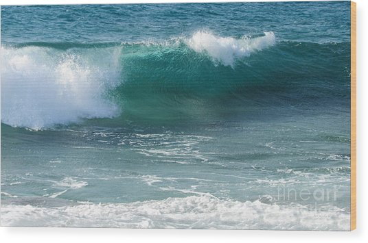Tropical Treasure Coast Florida Seascape Wave 99 Wood Print