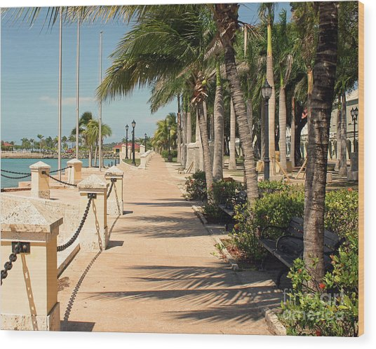 Tropical Walkway Wood Print