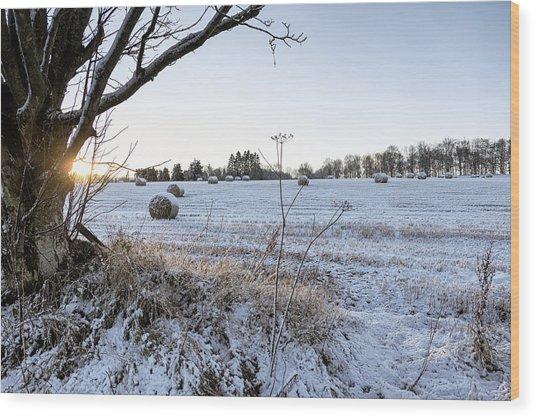 Trossachs Scenery In Scotland Wood Print