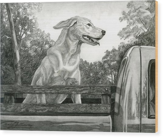 Truck Queen Study Wood Print by Craig Gallaway