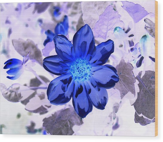 True Blue Wood Print by James Granberry