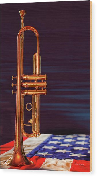Trumpet-close Up Wood Print