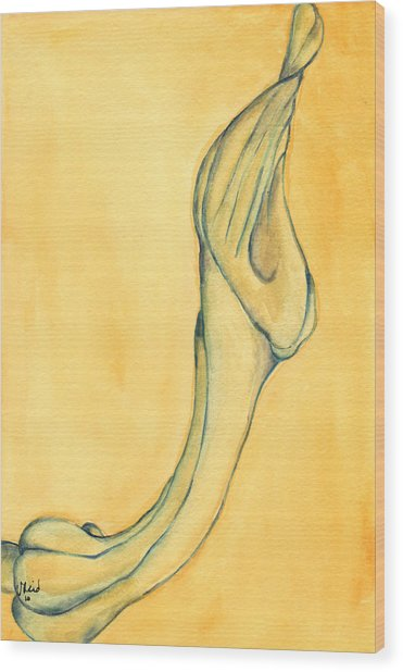 Trumpet Suspended Wood Print