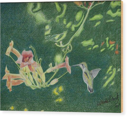 Trumpet Vine Rubby Wood Print