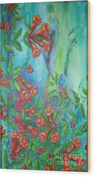 Trumpet Vine With Butterfly Wood Print by Sheri Hubbard