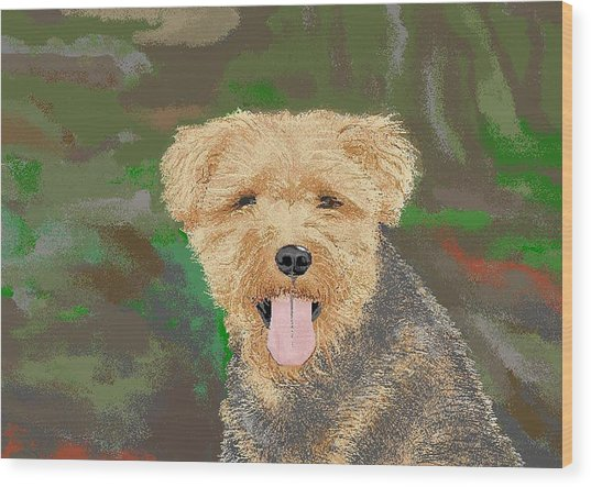 Tucker The Welsh Terror Wood Print by Carole Boyd